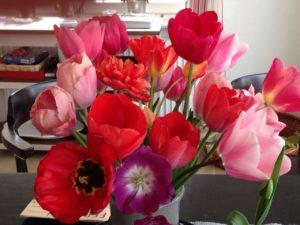 Die Therapeutische Wirkung Von Tulpen Antje Balters